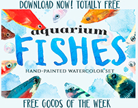 FREE FISHES WATERCOLOR CLIPART.DOWNLOAD FREEBIE.