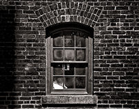 Toronto Distillery District Windows No 4