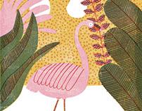 Illustrations June `16