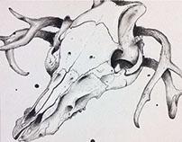 Contour line skull