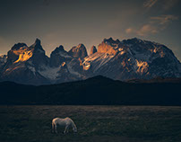 Patagonia Dreaming II