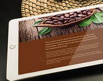 Cocoa Circle - Concept Design