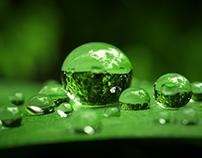 Waterdrops closeup