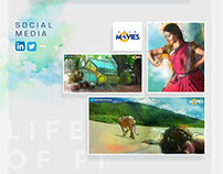 Life of Pi- Microsite & Social media