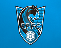 Black Panthers FC