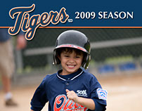 Little League Baseball Card Designs - Graphic Design