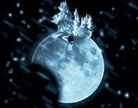 Winter Lunar Eclipse