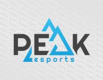 Peak - E sport Logo