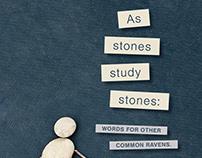 As Stones Study Stones