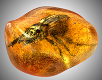 3d Insect on Amber.