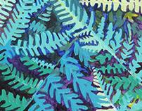 Waddesdon Ferns