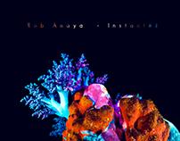 Rob Anaya - Instantes Cover