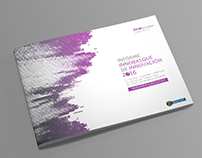 Innobasque annual Innovation report