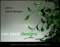 2014 aquarium plant | reptile plant designs