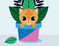 Cats in plants