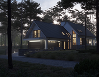 MODERN HOUSE IN THE WOOD (vis. for lk-projekt.pl)