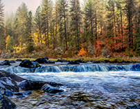Autumn Along the Southfork of the Clearwater in Idaho