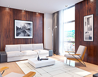 Design project of the contemporary flat.