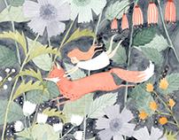 Little Runaway Fox