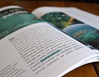Revista dos Resorts Salinas