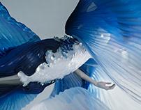 SIAMESE FISH ( CÁ SIM )
