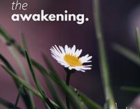 The Awakening...