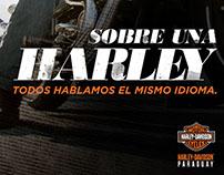 9no Encuentro Internacional de Harleros.