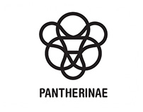Pantherinae