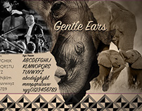 Gentle Ears Benefit Website Presentation