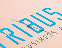 Tribus Business Advisors Brand Identity