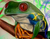 Airbrush frog in the wall
