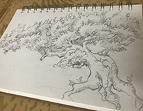 Tree concept study
