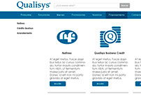 Qualisys Website Design