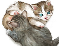 Phimosis in Kittens: Two Surgical Approaches