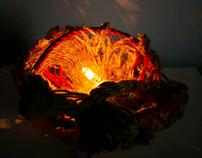 Metamorphosis lamps