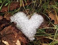 Cold Love