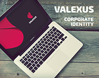 Valexus - Corporate Identity and Branding