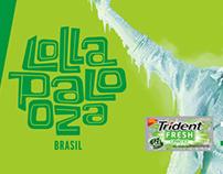 Trident - Lollapalooza Brasil - Digital