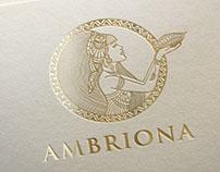 Ambriona Brand Identity