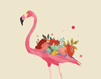 Flamingo Communication PRoject