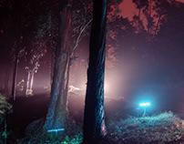 Illuminating Nature.