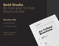 Bold Series Bifold and Trifold Brochure Package
