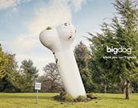 Big Dog Agency
