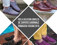 Landing Concurso Cardinale