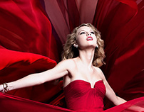 """Taylor Swift """"Speak Now"""""""