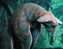 Long-legged Creature