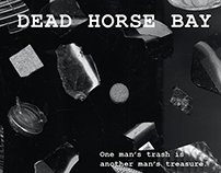 Dead Horse Bay - Experimental Identity Design