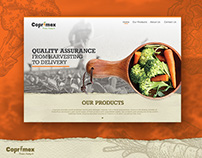 Coprimex International Exports. Web Design