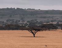 Maasai Mara National Reserve H.I.S. Kenya Magicalkenya