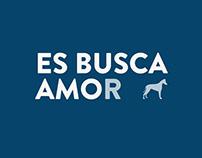 ES BUSCA AMOr - CAAC